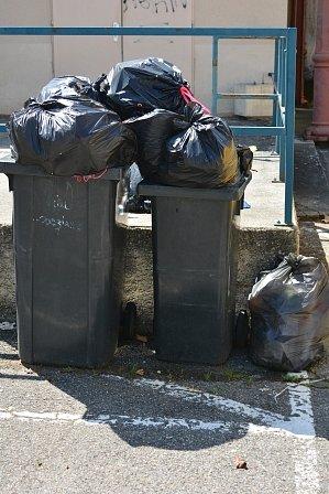 Noma-poubelles-noires.JPG