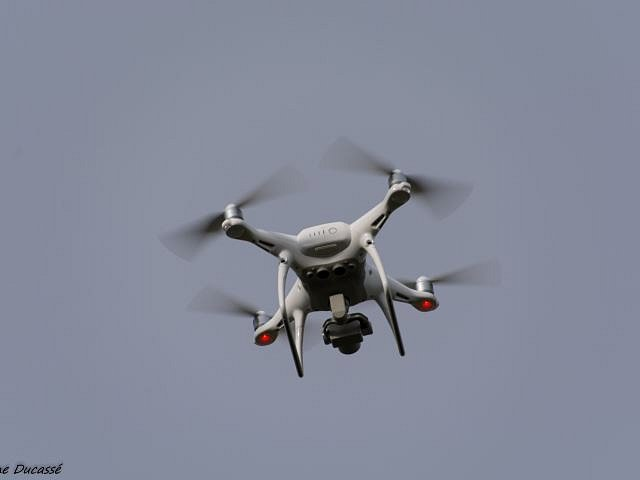 Drone-12.jpg