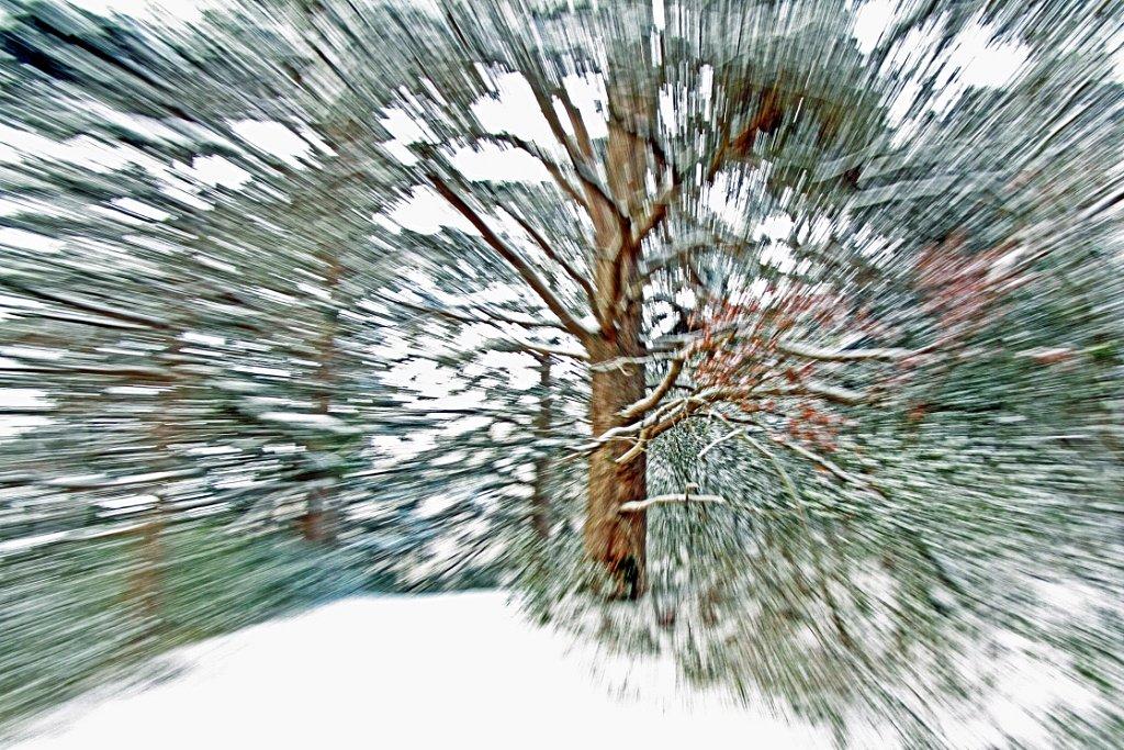 EnMansaut-hiver2012.jpg