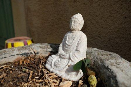 Patrick-S-Bouddha.JPG